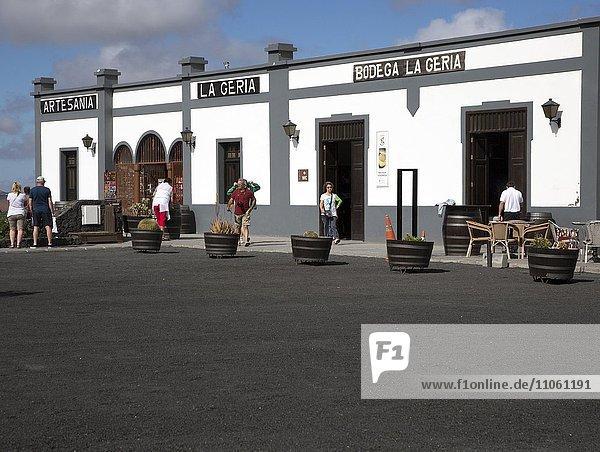 Bodega La Geria Weinberg  Touristenattraktion  Weinprobe und Weinkauf  Lanzarote  Kanarische Inseln  Spanien  Europa