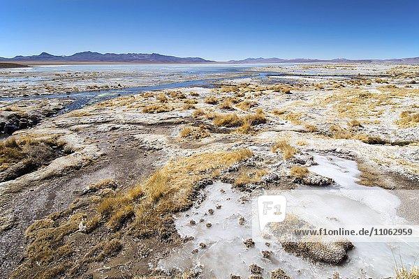 Ufer der Laguna Hedionda  bedeckt mit Salz und Eis  bei Uyuni  Altiplano  Bolivien  Südamerika
