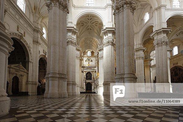 Kathedrale von Granada  Alcaicería de Granada  Innenansicht  Granada  Andalusien  Spanien  Europa