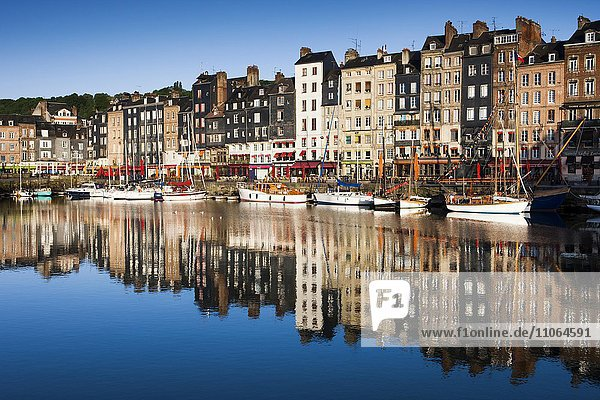 Houses and boats at the old harbor with reflections in calm water  Vieux Bassin  Honfleur  Calvados  Normandy  France  Europe