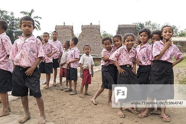 Schoolchildren in uniform  traditional Ngada village Bena  Bajawa  Flores Island  Indonesia  Asia