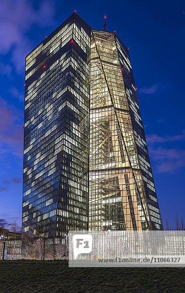 Hell erleuchtete Europäische Zentralbank  EZB  in der Abenddämmerung  blaue Stunde  Frankfurt am Main  Hessen  Deutschland  Europa