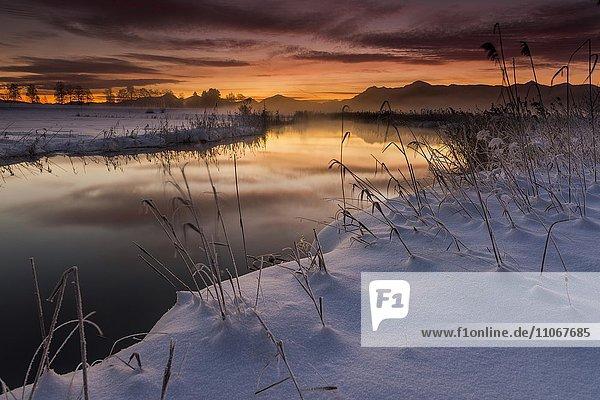 Sonnenaufgang über Flusslauf in winterlicher Landschaft  Murnau  Oberbayern  Deutschland  Europa