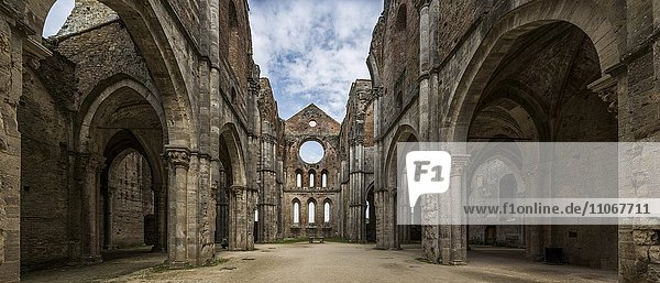Ruine der ehemaligen Zisterzienserabtei Abbazia San Galgano  Chiusdino  Toskana  Italien  Europa