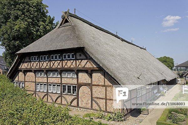 Fachwerkhaus im Freilichtmuseum Rieck-Haus oder Rieckhaus  Curslack  Vierlande  Hamburg  Deutschland  Europa