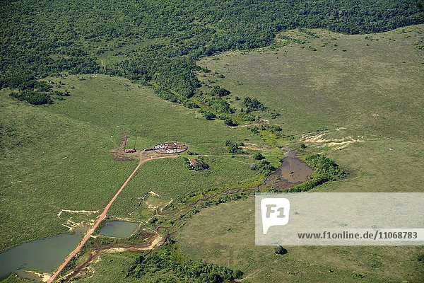 Aerial view  large scale clearing for pastures  Amazon Rainforest  District Itaituba  State of Para  Brazil  South America