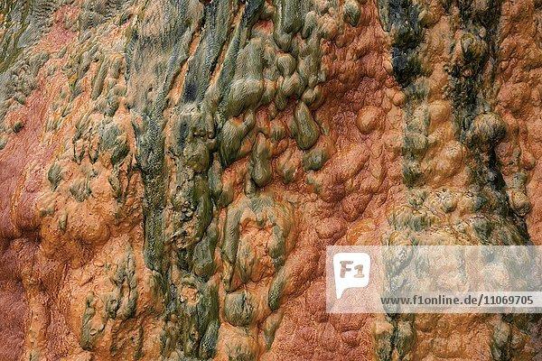 Farbige Mineralienablagerungen in einer Thermalquelle in Cilaos  Cirque de Cilaos  La Reunion  Afrika