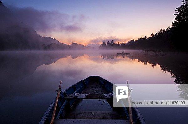 Ruderboot in der Morgendämmerung  Reintaler See  Kramsach  Tirol  Österreich  Europa