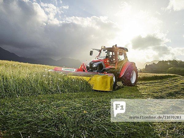 Traktor mäht ein Feld  Breitenbach  Inntal  Tirol  Österreich  Europa