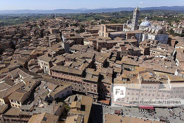 Ausblick vom Turm Torre del Mangia auf die Dächer der Altstadt  Siena  Provinz Siena  Toskana  Italien  Europa