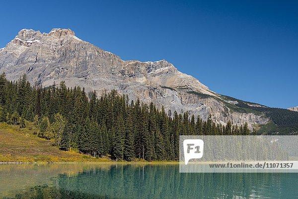 Emerald Lake  Yoho Nationalpark  kanadische Rocky Mountains  British Columbia  Kanada  Nordamerika