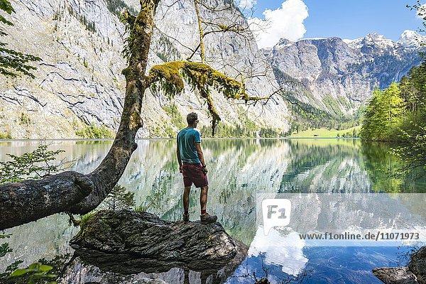 Junger Mann steht auf einem Stein im Wasser und blickt in die Ferne  Obersee mit Wasserspiegelung  Salet am Königssee  Nationalpark Berchtesgaden  Berchtesgadener Land  Oberbayern  Bayern  Deutschland  Europa