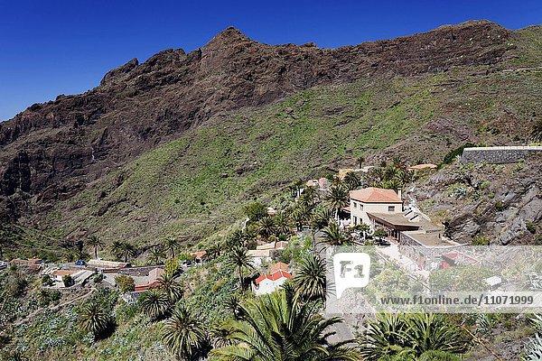 Masca im Teno Gebirge  Teneriffa  Kanarische Inseln  Spanien  Europa