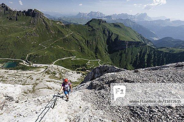 Bergsteigerin beim Aufstieg auf die Punta Serauta über die Via Ferrata Eterna bei der Marmolata  unten der Fedaia Pass  hinten der Heiligkreuzkofel  die Conturines-Gruppe und die Tofane  Klettersteig  Dolomiten  Veneto  Italien  Europa
