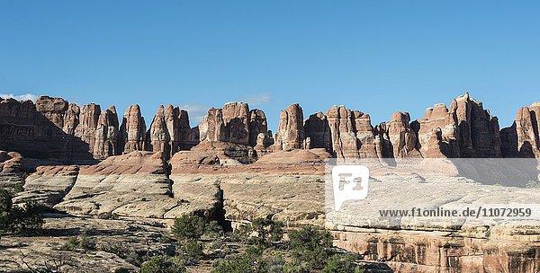 Chesler Park  Felsnadeln  Felsplateau  Felsformationen The Needles District  Canyonlands Nationalpark  Utah  USA  Nordamerika