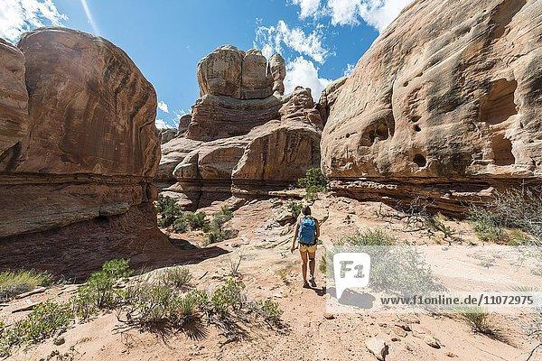 Wanderin auf einem Wanderweg durch eine Schlucht,  The Needles District,  Canyonlands Nationalpark,  Utah,  USA,  Nordamerika