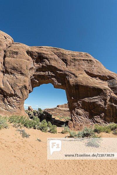 Felsbogen Pine Tree Arch  Arches Nationalpark  Moab  Utah  USA  Nordamerika