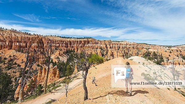 Wanderin mit Rucksack auf Wanderweg in bizarrer Landschaft  rötliche Felslandschaft mit Hoodoos  Sandsteinformationen  Bryce Canyon Nationalpark  Utah  USA  Nordamerika