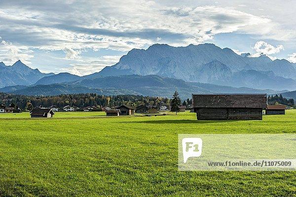 Wiese mit Heuhütten  hinten Arnspitzgruppe  Grünkopf  Kranzberg  Wettersteinspitze und Wettersteinwand im Wettersteingebirge  Krün  Oberbayern  Bayern  Deutschland  Europa