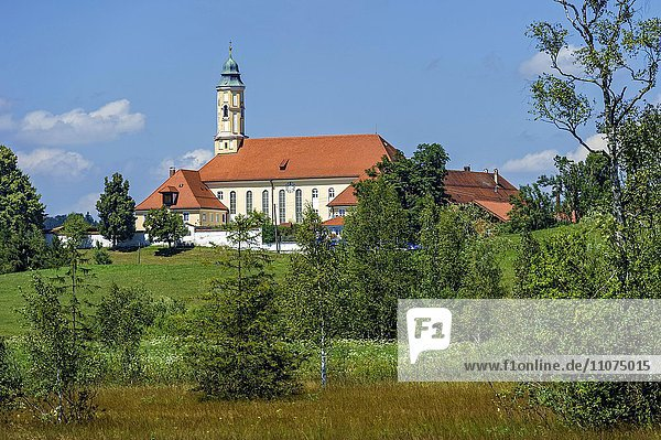 Klosterkirche Maria Verkündigung  Kloster Reutberg  Sachsenkam  Isarwinkel  Oberbayern  Bayern  Deutschland  Europa