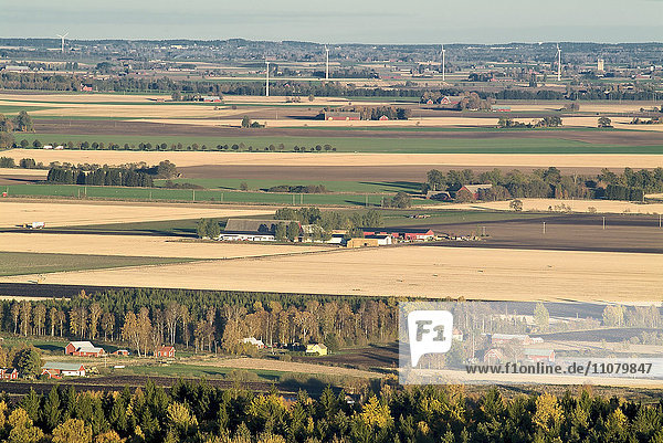 View of agricultural field with houses and wind turbines