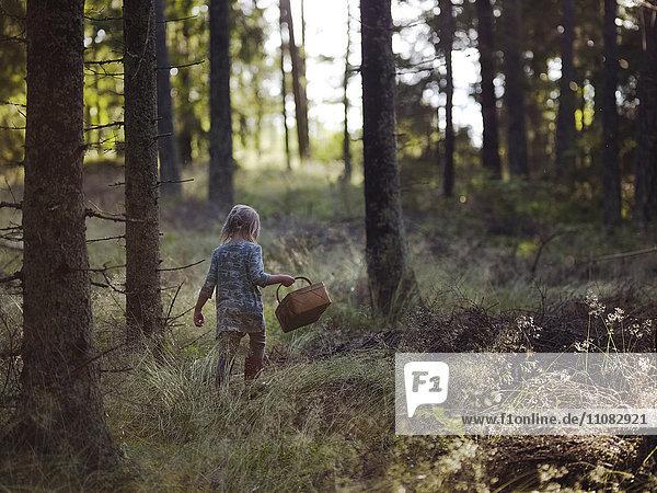 Girl in forest picking mushrooms