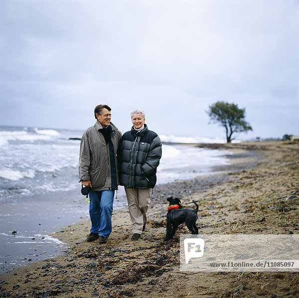 Middle-aged couple walking on a beach  Sweden.