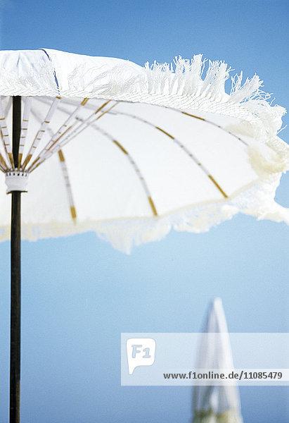 A white parasol A white parasol