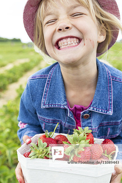 Grinning little girl holding box of strawberries on a strawberry field