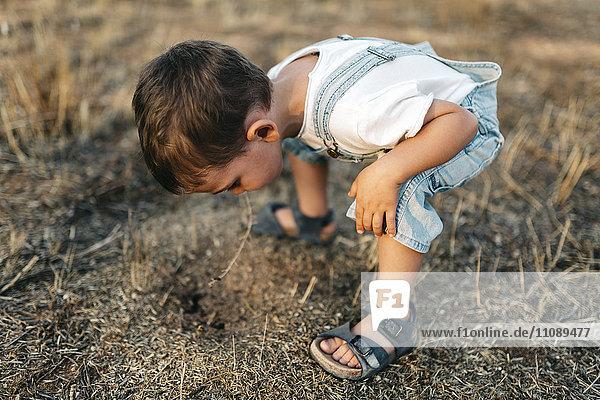 Little boy playing on a field