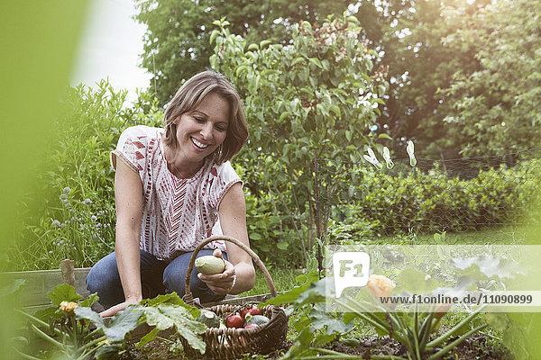 Lächelnde Frau im Garten bei der Gemüseernte