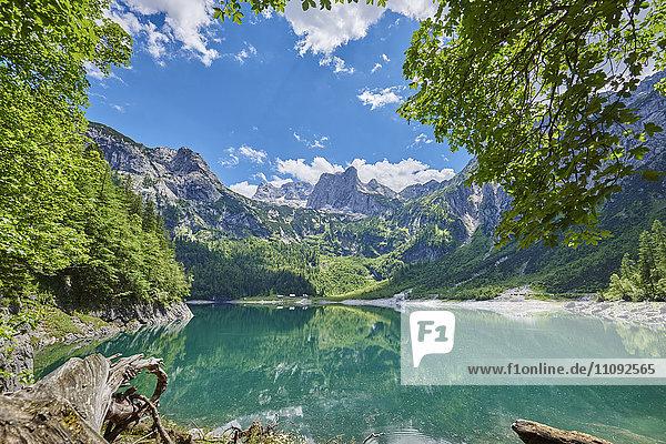 Gosausee und Alpen  Österreich  Europa