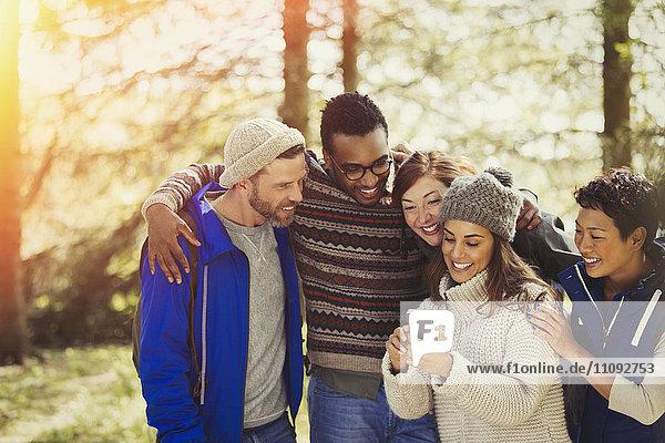 Lächelnde Freunde beim SMSen mit dem Handy im Wald