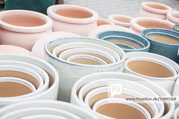 Plant pots in greenhouse for sale  Augsburg  Bavaria  Germany