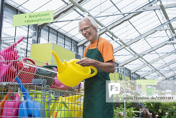Male gardener arranging colourful watering cans  Augsburg  Bavaria  Germany