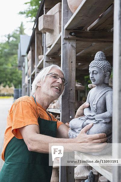 Male gardener examining Buddha sculpture in greenhouse  Augsburg  Bavaria  Germany