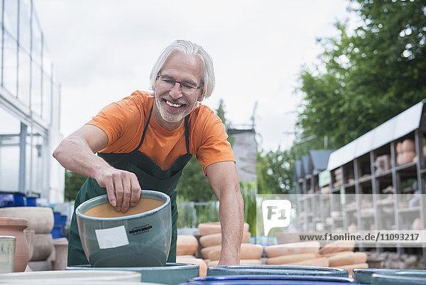 Male gardener arranging ceramic pots in greenhouse  Augsburg  Bavaria  Germany