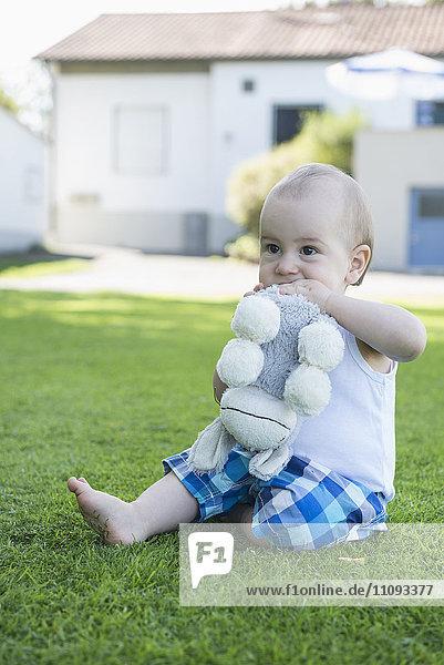 Cute little baby boy biting donkey toy in the garden  Munich  Bavaria  Germany