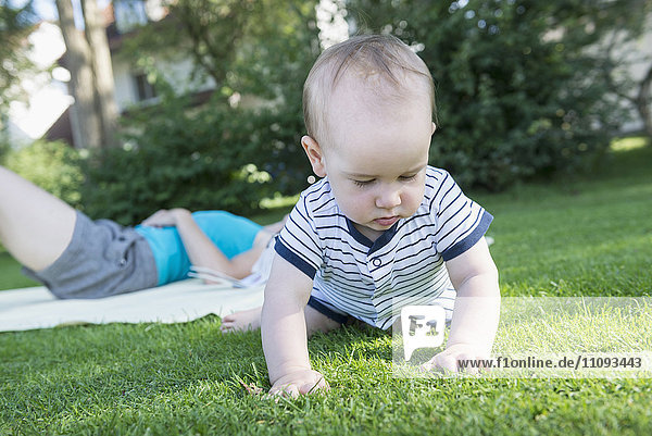 Baby boy exploring grass in lawn and his mother lying down in lawn  Munich  Bavaria  Germany Baby boy exploring grass in lawn and his mother lying down in lawn, Munich, Bavaria, Germany
