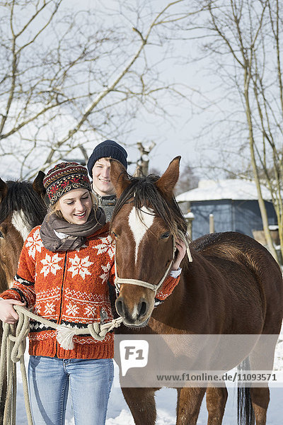 Young couple standing with horses in barn  Bavaria  Germany