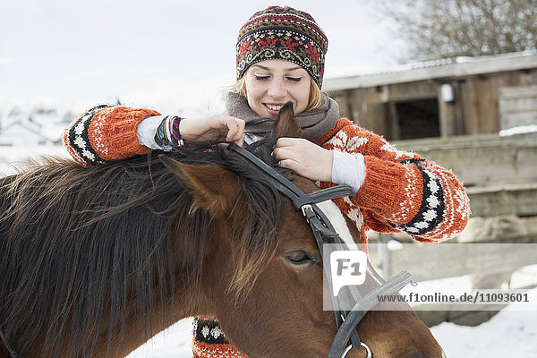 Young woman adjusting bridle her horse for riding  Bavaria  Germany Young woman adjusting bridle her horse for riding, Bavaria, Germany