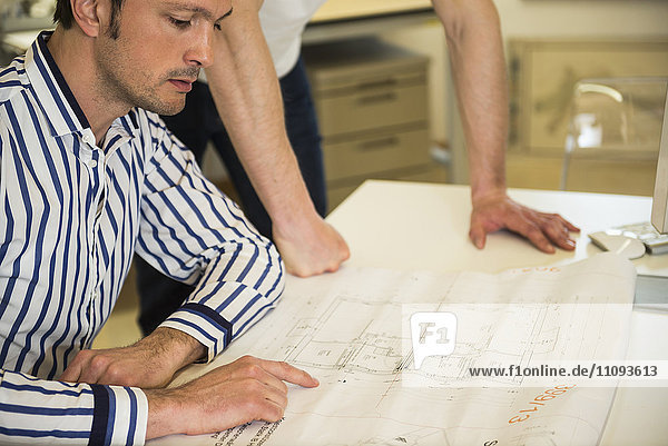 Architects discussing about project in the office  Bavaria  Germany