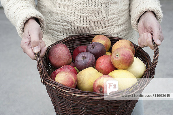 Mid section of a man holding basket full of apples in his hands in front of wholefood shop Mid section of a man holding basket full of apples in his hands in front of wholefood shop