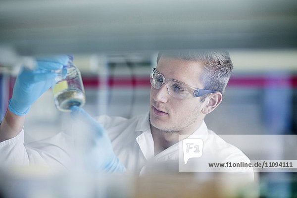 Young male scientist working in a pharmacy laboratory