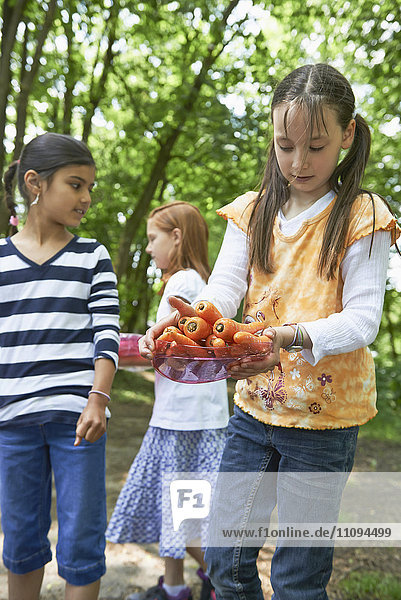 Girl holding plate of washed carrots at picnic  Munich  Bavaria  Germany