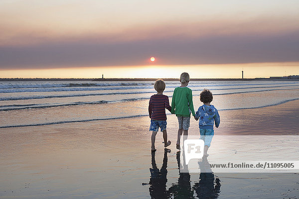 Rear view of three kids walking on the beach during sunset  Viana do Castelo  Norte Region  Portugal