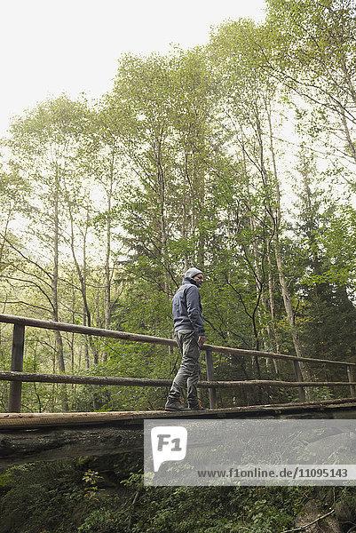 Mature hiker crossing footbridge in forest  Austrian Alps  Carinthia  Austria