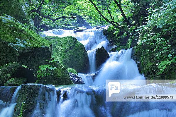 Uodome Falls