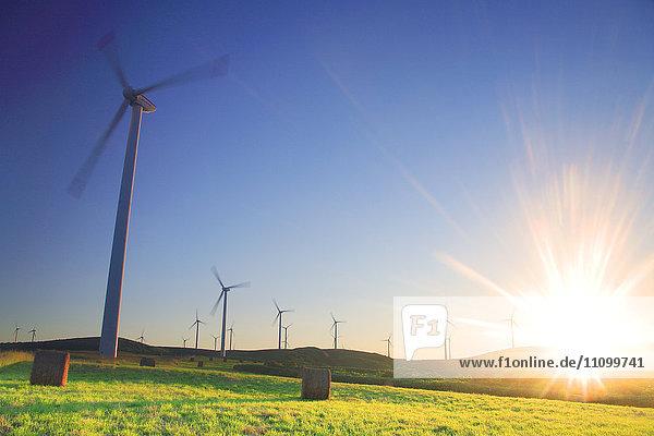 Sunset Over Wind Farm