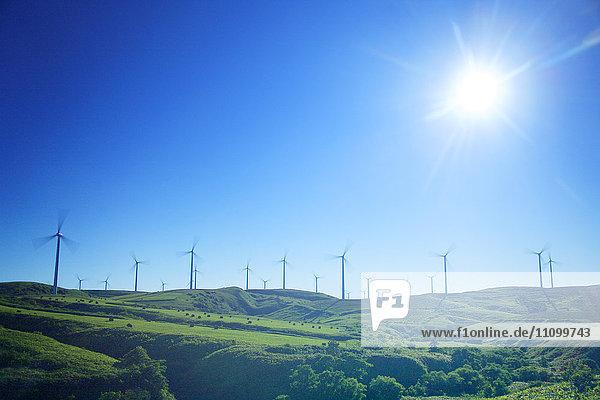 Sun Shining Over Wind Farm